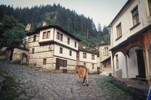 bulgaria-14