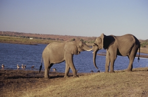 southafrica-6
