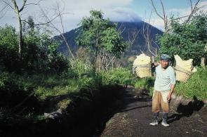 indonesia-x-12