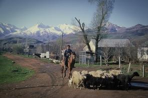 kirgizstan-12