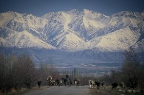 kirgizstan-14