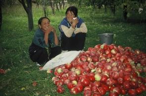 kirgizstan-9