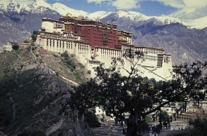 tibet-x-1