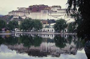 tibet-x-16