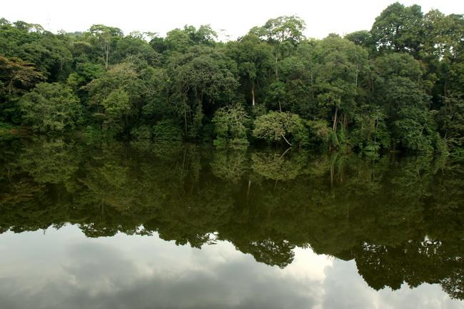טיול לאוגנדה - אגם נקרובה