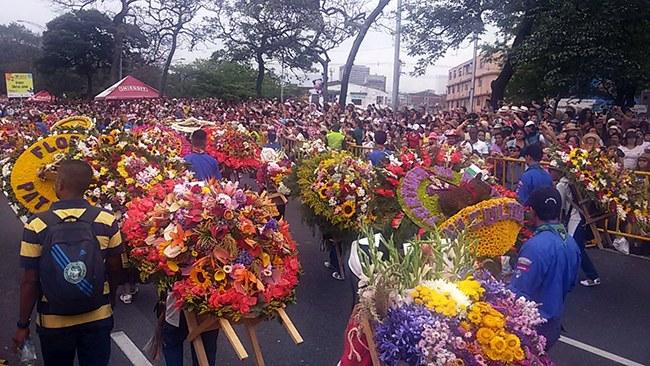 """פסטיבל הפרחים - צולם עי"""" נועם סלע"""