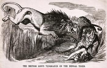 האריה הבריטי מביס את הטגריס הבנגאלי