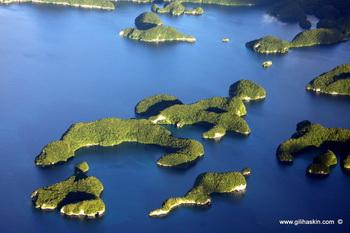 איי הפטרייה