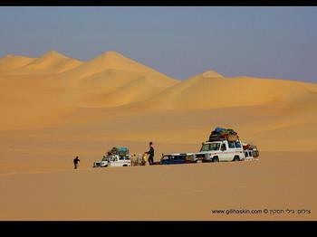 במדבר המערבי