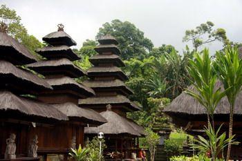 מקדש היער - באטוקרו