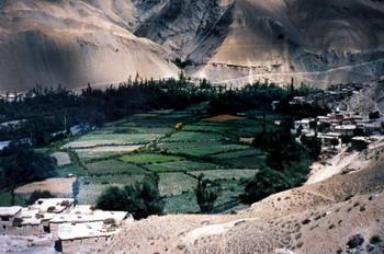 העמק של פאדום