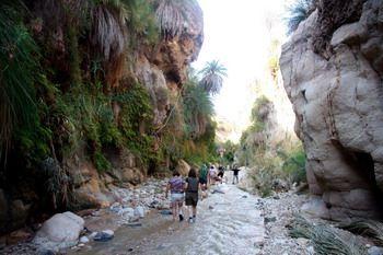 ואדי אבן חמאד - ירדן