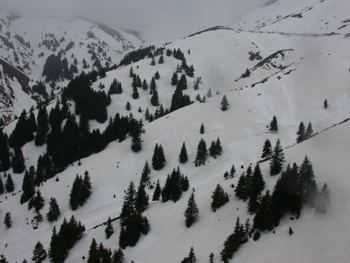 Agrafa in winter