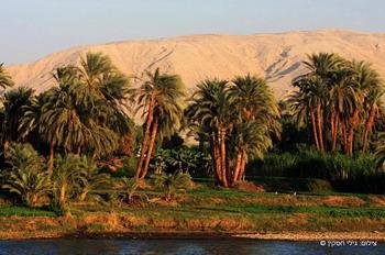 לאורך הנילוס