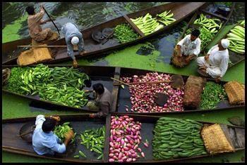 השוק הצף באגם דאל