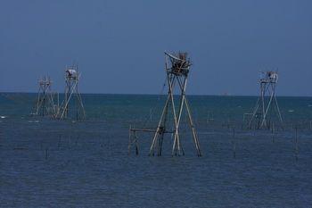 עמדות דייג
