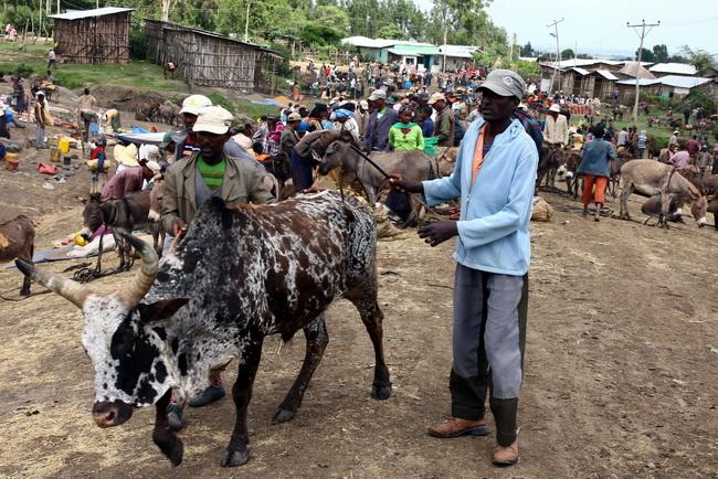 Bale-Etiopia_1