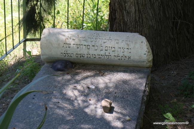 סיור לכנרת יוסף זלצמן
