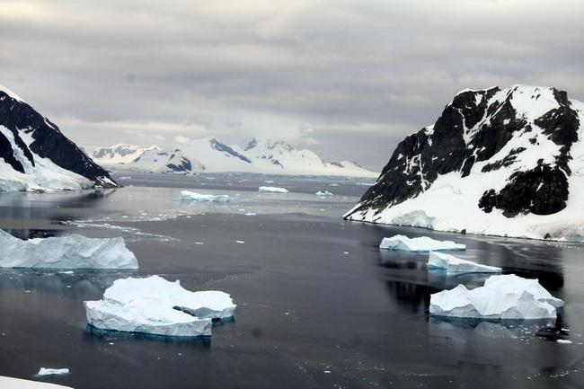 טיול לאנטארקטיקה