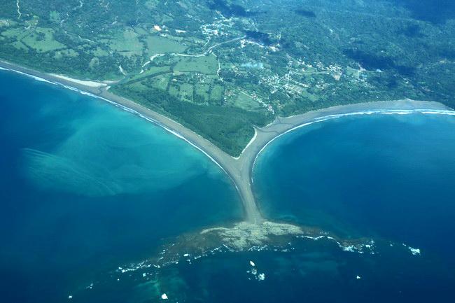 חוף הלוויתן