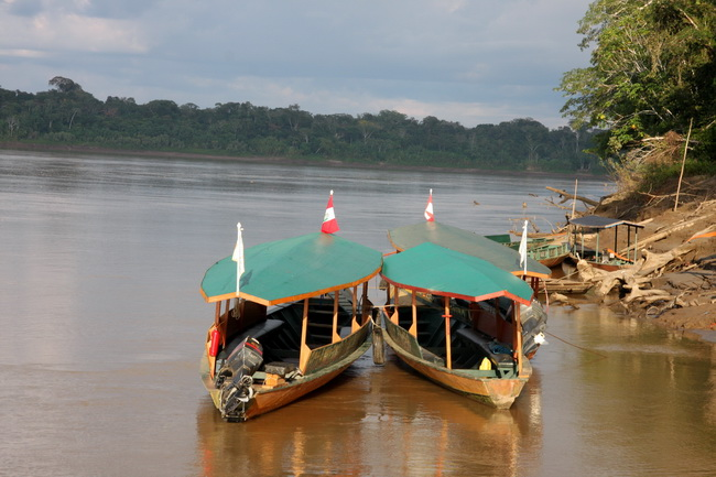 טיול לפרו - ג'ונגל