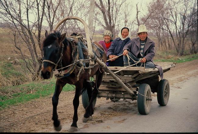 טיול לקירגיזסטן - צילום: גילי חסקין, ספטמבר 2000