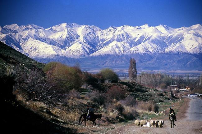 טיול לקירגיזסטן - בהרי טיין שאן. צילום: גילי חסקין