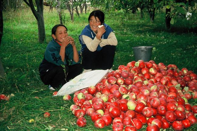 טיול לקירגיזסטן - צילום: גילי חסקין; ספטמבר 2000