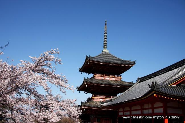 טיול ליפן - בודהיזם