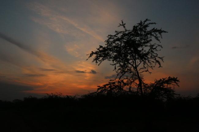 טיול לטנזניה, צילום: גילי חסקין, מאי 2013