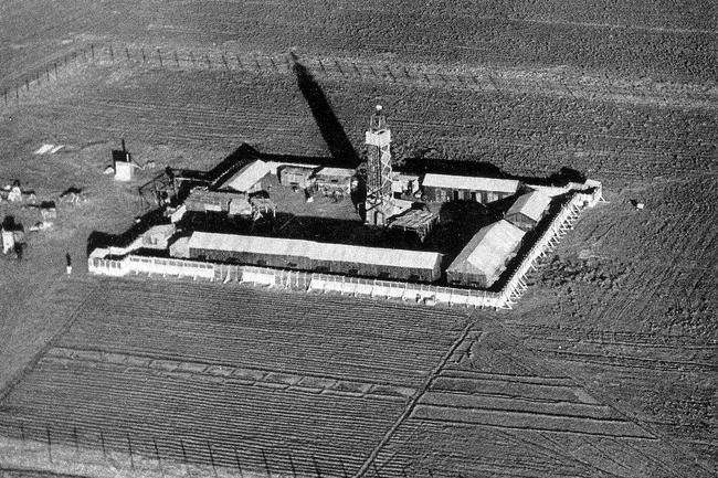 חומה ומגדל