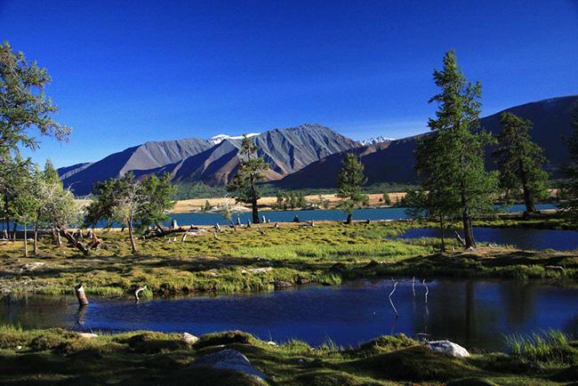 הרי אלטאי, מצדם המונגולי. צילם: גילי חסקין; 2011