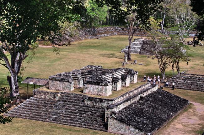 בעקבות תרבות המאיה