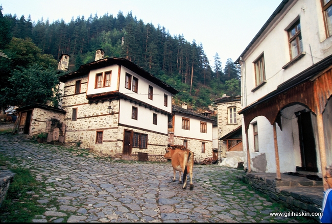 טיול לבולגריה