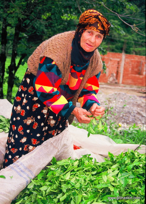 בכפרים הפומקים. צילום: גילי חסקין