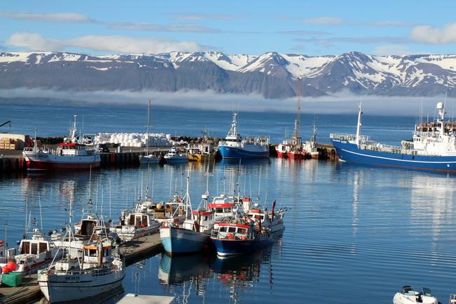 טיול לצפון איסלנד