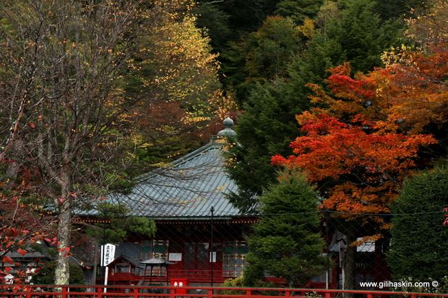 טיול ליפן - ניקו
