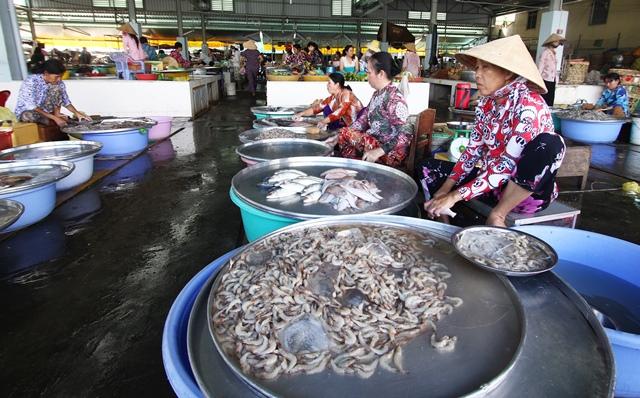 שוק הדגים בהויאן. צילום: גילי חסקין