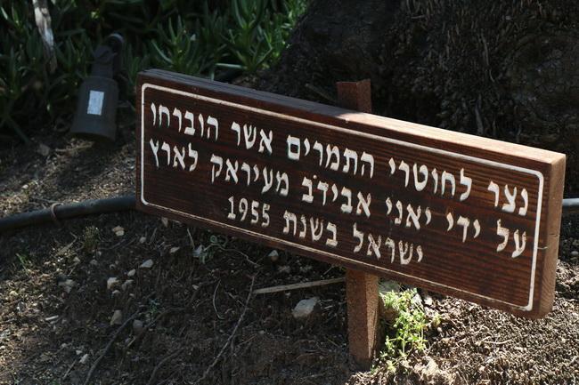 טיול לעמק יזרעאל