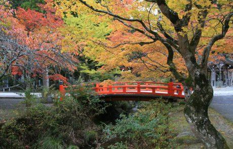 טיול ליפן, אוקטובר 14