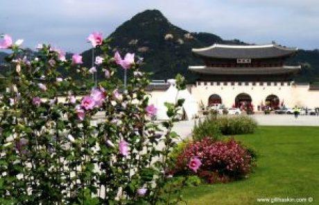 יחסי דרום קוריאה עם צפון קוריאה