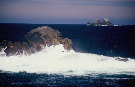 טיול לניו זילנד חורף 2012