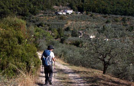 דרך פרנציסקוס הקדוש באיטליה