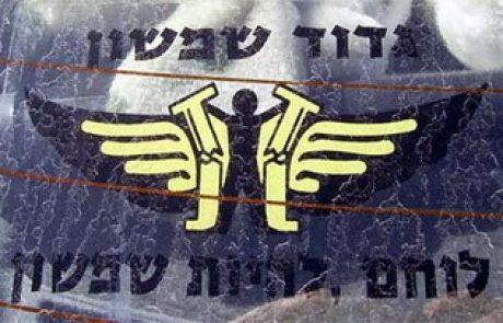 דמותו של שמשון הגיבור