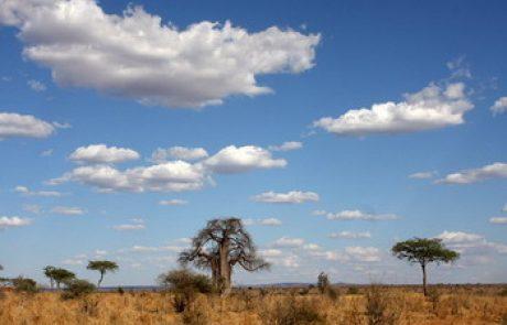 טיול סאפארי בקניה