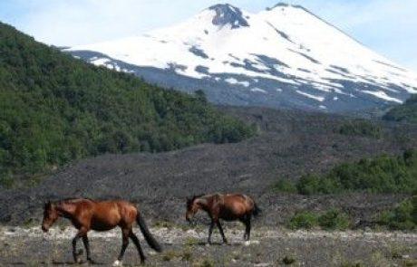 הטיפוס להר הגעש וייריקה