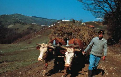 גיאוגרפיה והיסטוריה של הבלקן