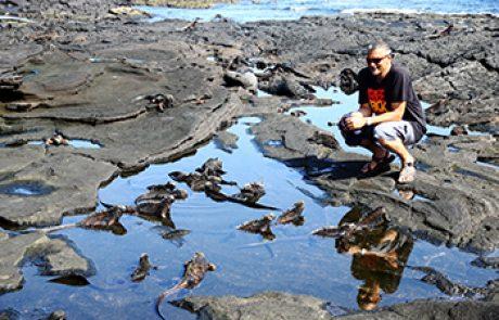 יומן הטיול באיי הגלפגוס – אפריל 2013