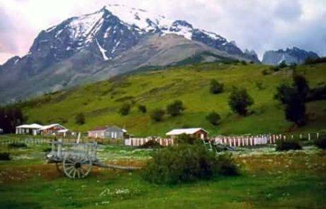 צ'ילה: הפיינה שלי – פרקי יומן