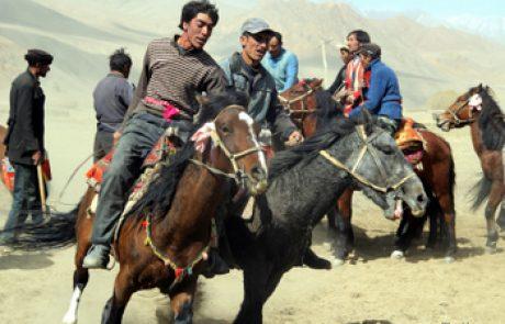 הארגון הצבאי המונגולי